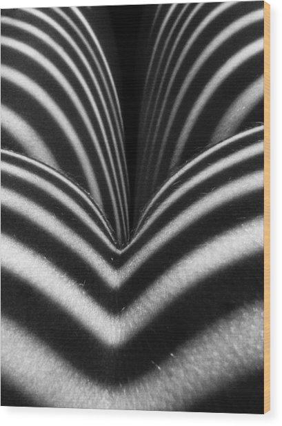 2621 Zebra Woman Closeup Wood Print