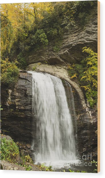 2718 Looking Glass Falls Wood Print by Stephen Parker