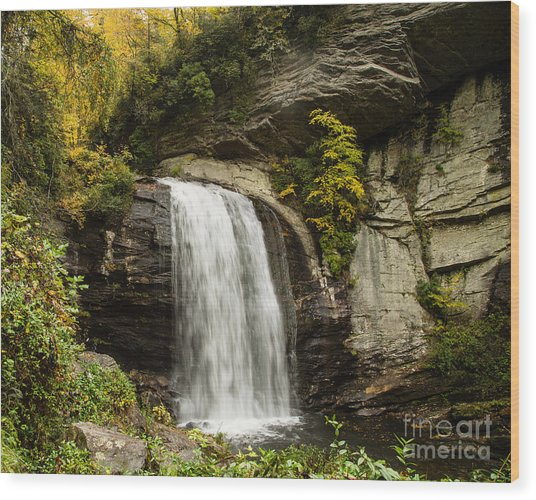 2719 Looking Glass Falls Wood Print by Stephen Parker