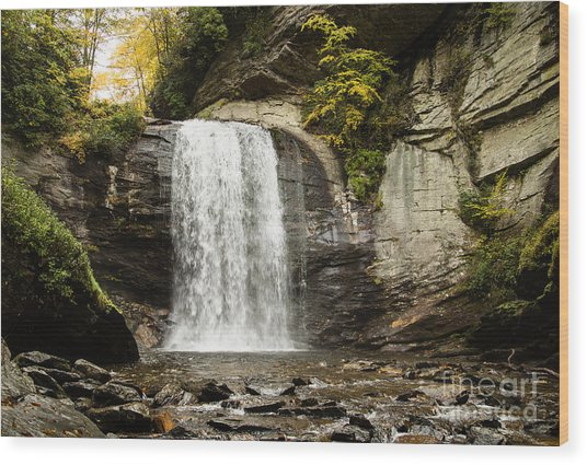 2722 Looking Glass Falls Wood Print by Stephen Parker