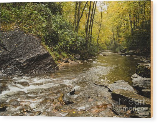 2725 Looking Glass Falls Wood Print by Stephen Parker
