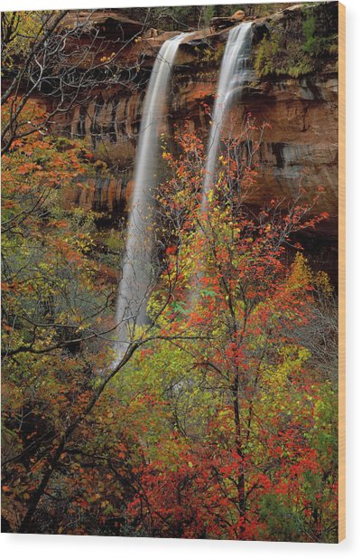Zion National Park, Utah Wood Print by Scott T. Smith