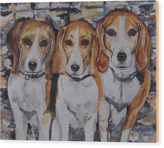 3 Amigo Beagles Wood Print