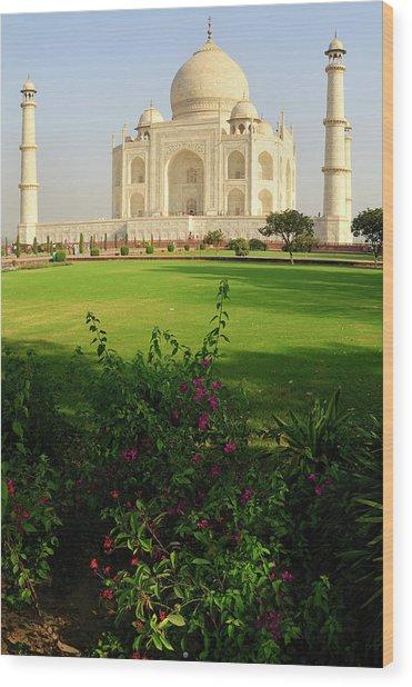 Asia, India, Uttar Pradesh, Agra Wood Print