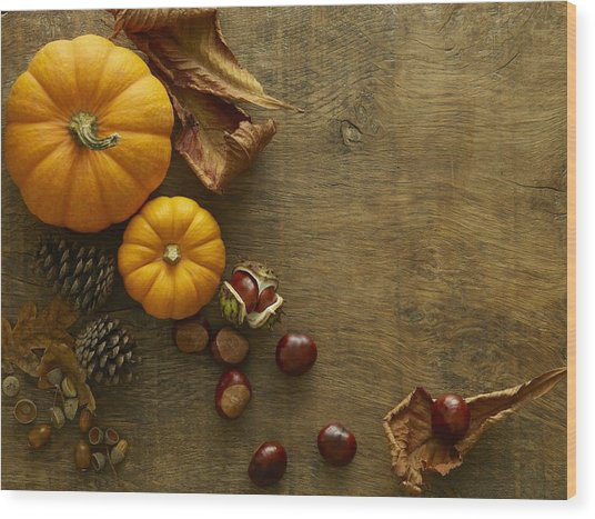 Autumn Still Life Wood Print by Science Photo Library
