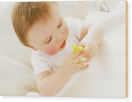 Baby Boy Eating A Crisp Wood Print by Ruth Jenkinson/science Photo Library