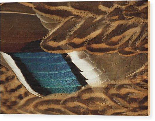 Canada, British Columbia, George C Wood Print by Rick A Brown