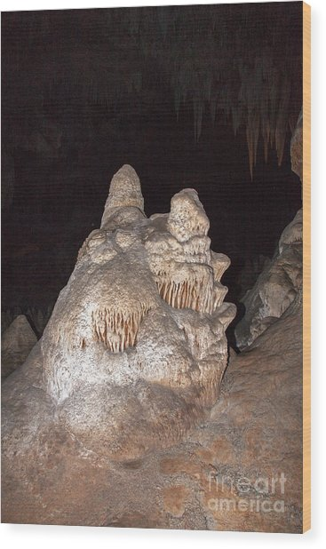 Carlsbad Caverns National Park Wood Print