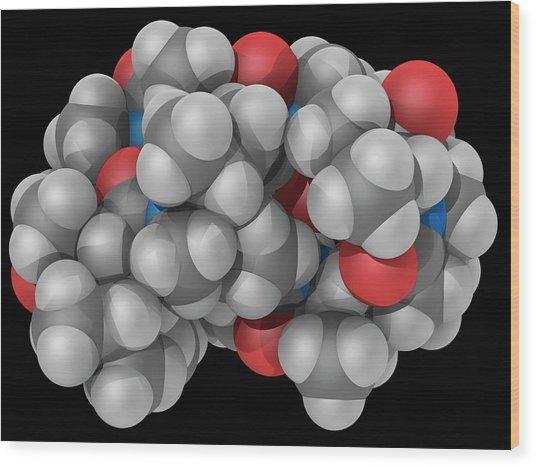 Ciclosporin Drug Molecule Wood Print by Laguna Design/science Photo Library