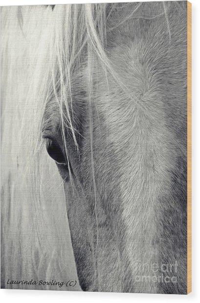 Equine Study Wood Print