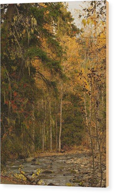 Fall At Sheep Creek Wood Print