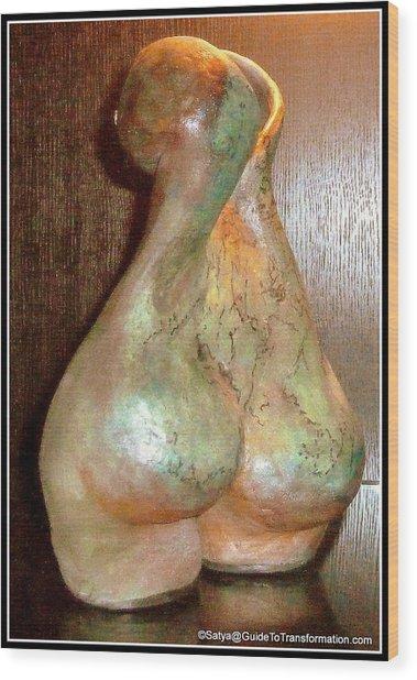 Garden Of My Soul Wood Print by Satya Winkelman