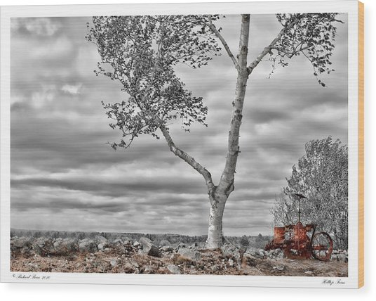 Hilltop Farm Wood Print by Richard Bean