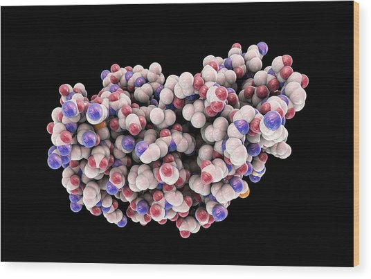 Interferon Gamma Molecule Wood Print by Kateryna Kon/science Photo Library