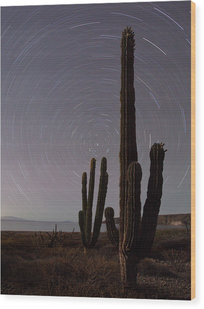Isla Carmen, Sea Of Cortez, Baja, Mexico Wood Print by Gary Luhm