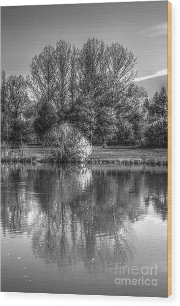 Wood Print featuring the photograph Lake Reflections by Jeremy Hayden
