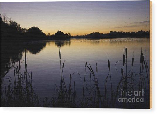 Lake Sunrise Wood Print by Darren Burroughs