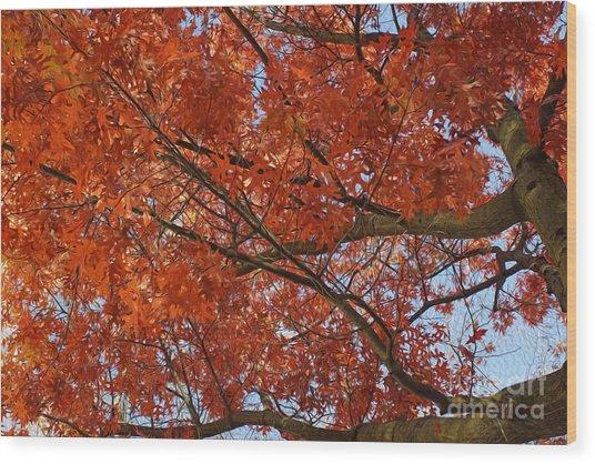 Leaves Wood Print by Nur Roy