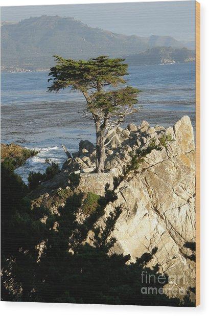 Lone Cypress Wood Print