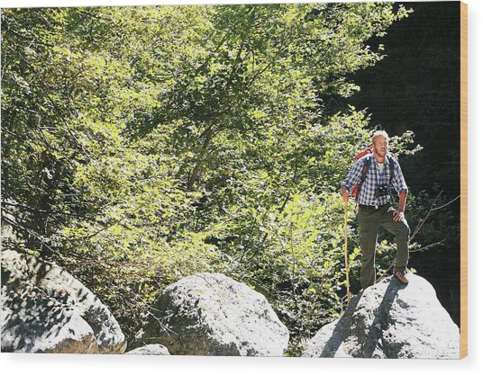 Man Hiking In The Sun Wood Print by Mauro Fermariello/science Photo Library