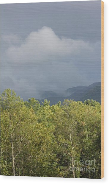 Mountain Mist Great Smoky Mountains Wood Print