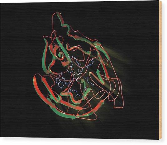 Neuraminidase Wood Print by Hipersynteza