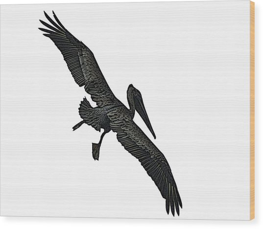 Pelican Selection Wood Print