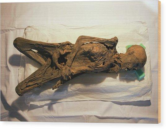 Peruvian Mummy Wood Print by Marco Ansaloni / Science Photo Library