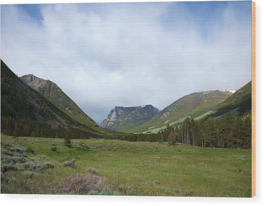Rainbow At Beartooth Pass Wood Print