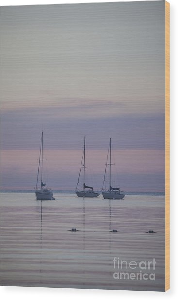3 Sailboats Wood Print
