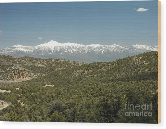 611p Schell Creek Range Nv Wood Print
