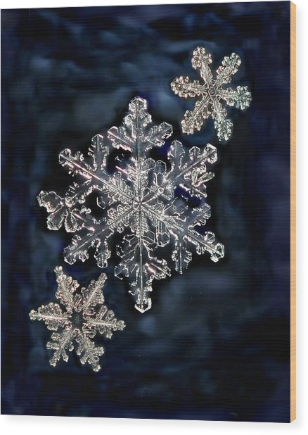 3 Snowflakes For The Price Of One Wood Print