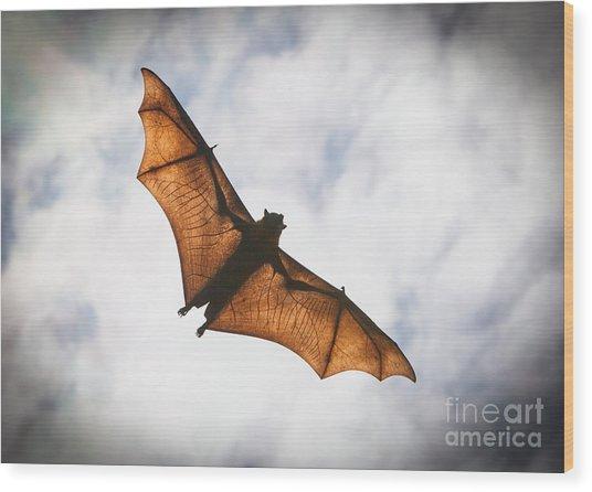 Spooky Bat Wood Print