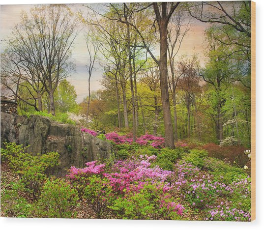 The Azalea Garden Wood Print