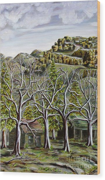 Then And Now A New Beginning Wood Print by Linda  Steine