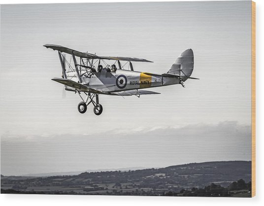 Tiger Moth Wood Print