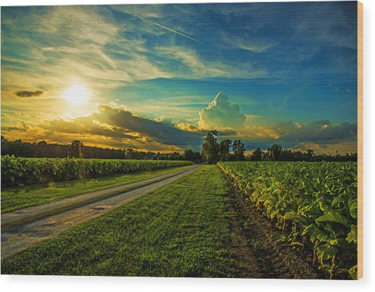 Tobacco Road Wood Print