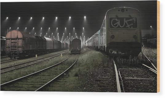 Trainsets Wood Print by Leif L?ndal