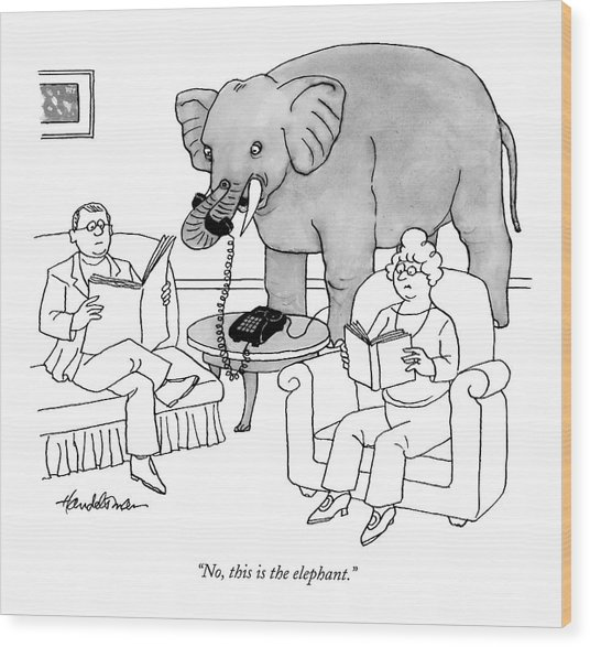 No, This Is The Elephant Wood Print