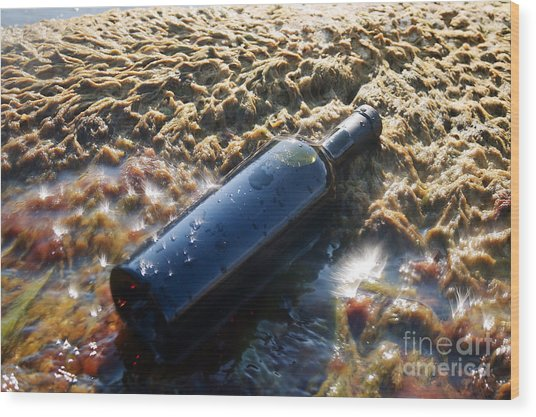 Wine In The Bottle. Wood Print by Alexandr  Malyshev