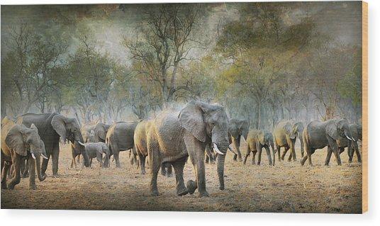 Untitled Wood Print by Antonio Grambone