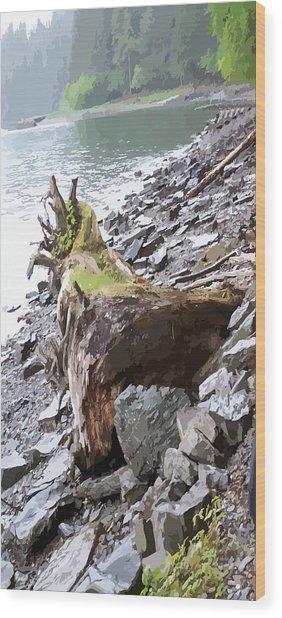 3206 Alaskan Rain Forest Shore Line Wood Print