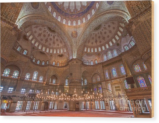 Blue Mosque Istanbul Wood Print