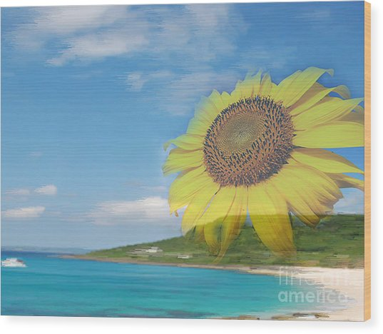 Sunflower Facing The Oceans  Wood Print