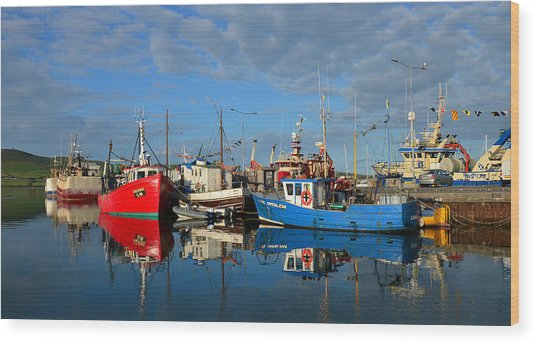 Dingle Boats Wood Print