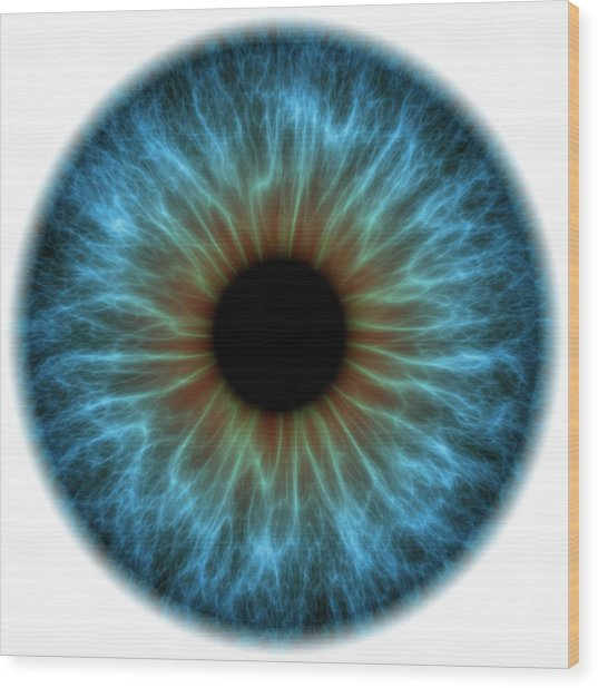 Eye Wood Print by Pasieka