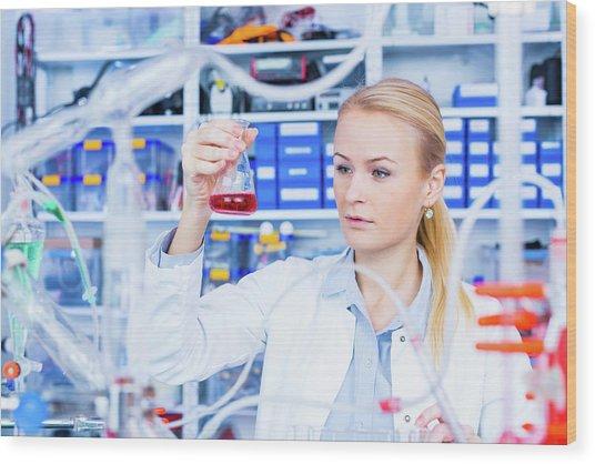 Female Chemist Working In Lab Wood Print by Wladimir Bulgar/science Photo Library