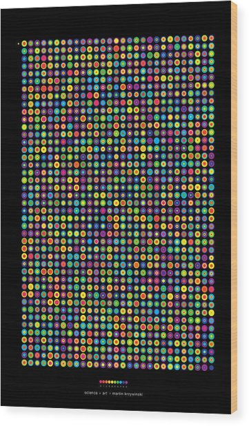 Frequency Distribution Of Digits In Pi Wood Print by Martin Krzywinski