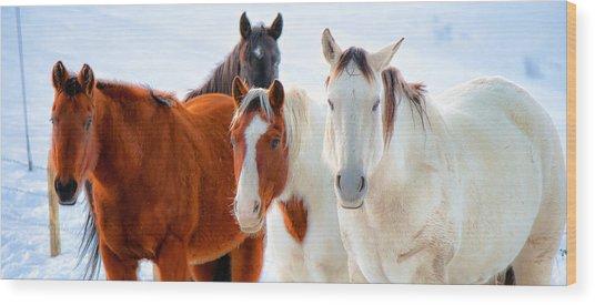 4 Horses Wood Print