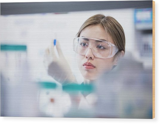Lab Assistant Wearing Safety Goggles Wood Print by Science Photo Library